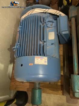 Motor eléctrico Weg 60 cv